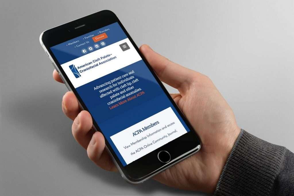 ACPA Phone Display